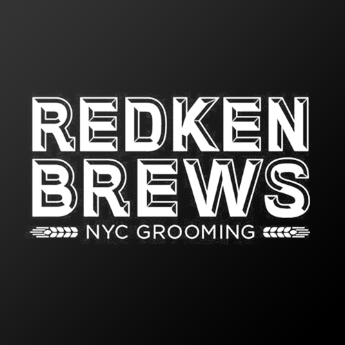 redken brews hair salon products