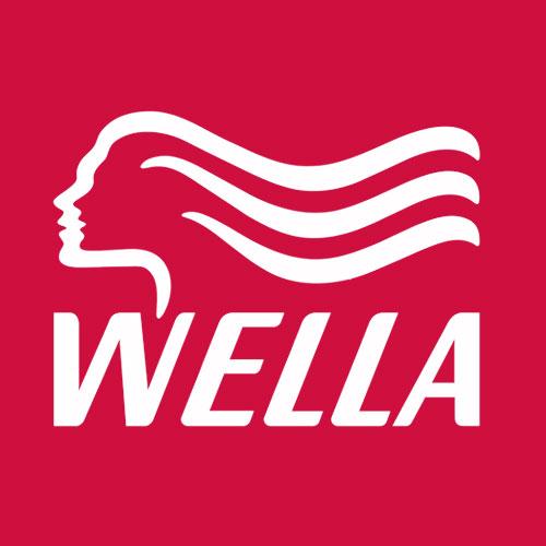 wella hair salon products